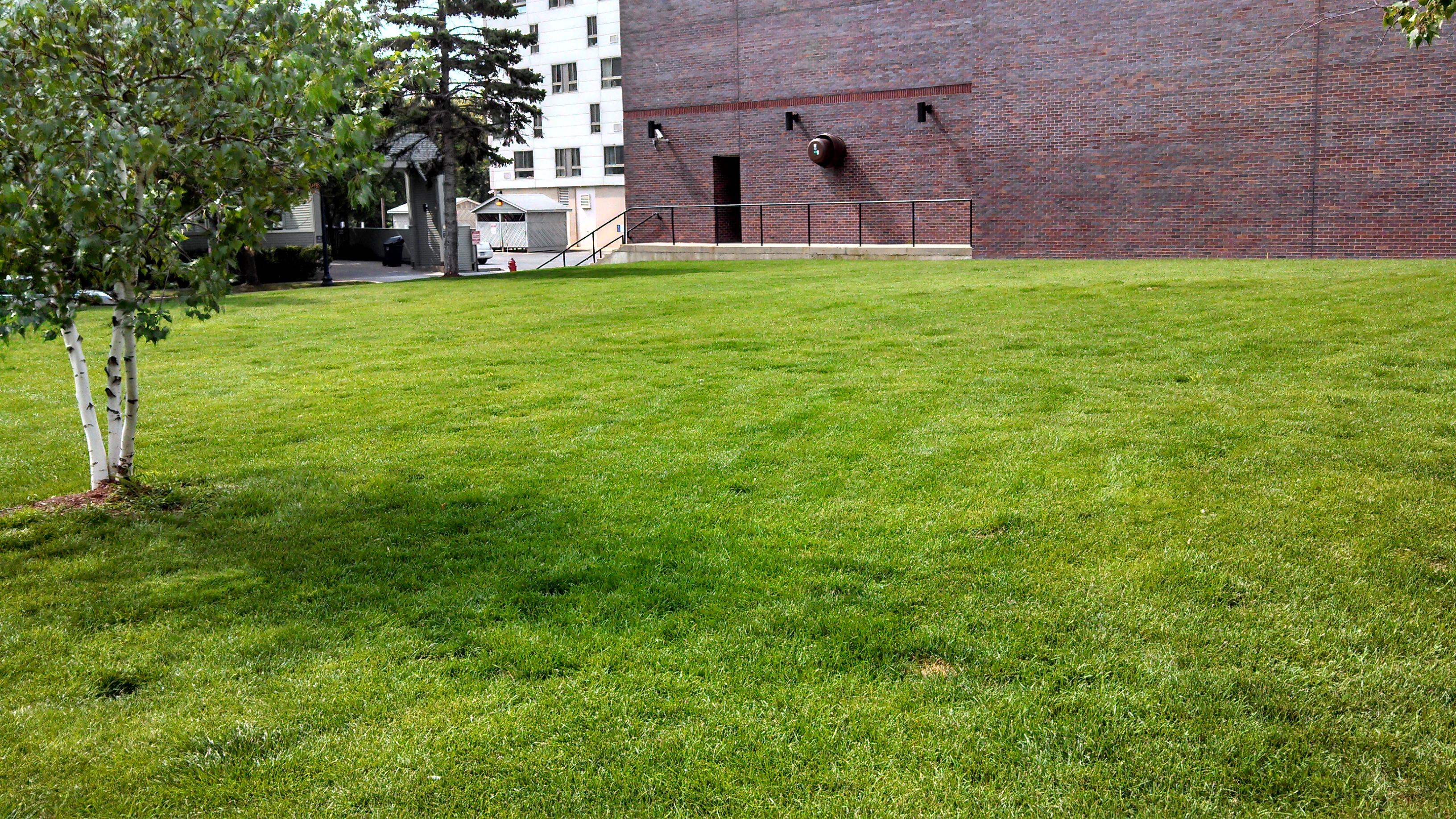 Community Garden Still Untilled